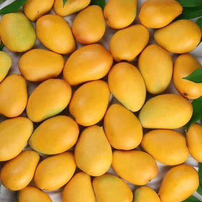 【10斤特价】广西百色小台农芒果整箱非海南台芒超甜新鲜水果3斤