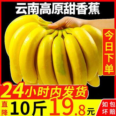 【优惠促销】云南高原大香蕉新鲜水果整箱非芭蕉红皮小米蕉苹果蕉