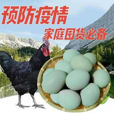 新品【晨诚】30枚或40枚农家散养绿壳土鸡蛋新鲜乌鸡蛋【破损包赔