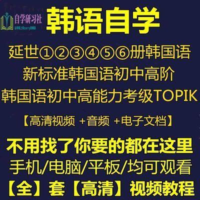新标准韩国语全套入门自学韩语 topik 网课视频延世零基础口语课