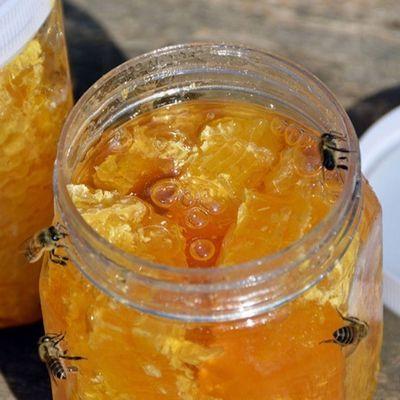 蜂蜜正宗纯正天然蜂巢蜜荆条蜜农家自产自销蜂巢蜜罐装蜂场直发