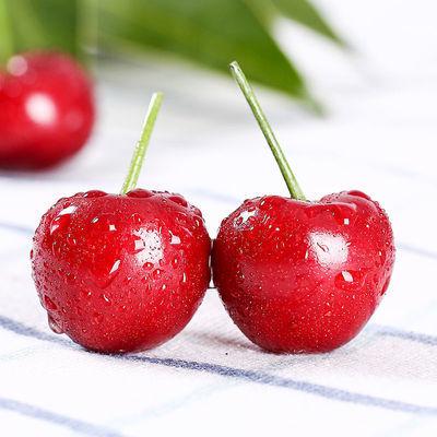 包邮大樱桃新鲜樱桃 樱桃水果孕妇国产国产车红灯厘子季国产应当
