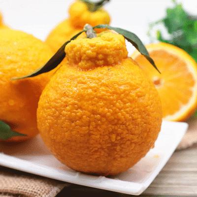 四川丑橘不知火桔子10斤水果新鲜当季丑柑橘丑桔丑八怪2/3/5/9斤