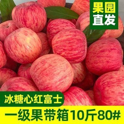 正宗陕西洛川红富士苹果精品苹果新鲜脆甜水果孕妇水果冰糖心苹果