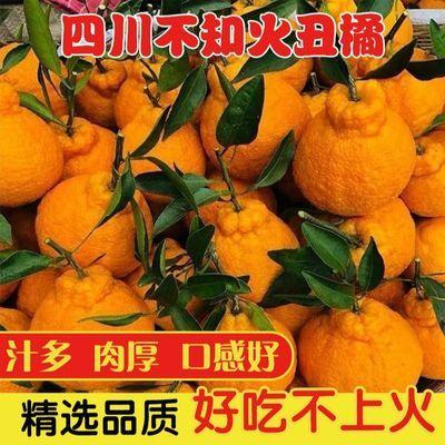 四川丑橘不知火橘子桔子丑橘丑柑10斤装 丑八怪新鲜水果现摘2/5斤