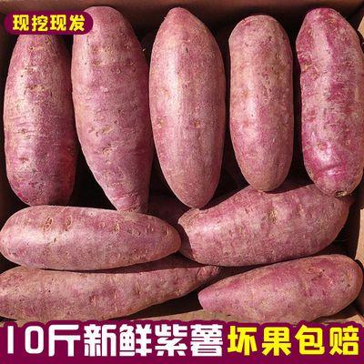【种植35批发沙地板栗紫薯番薯10地瓜斤紫心】/农家新鲜/紫薯现挖