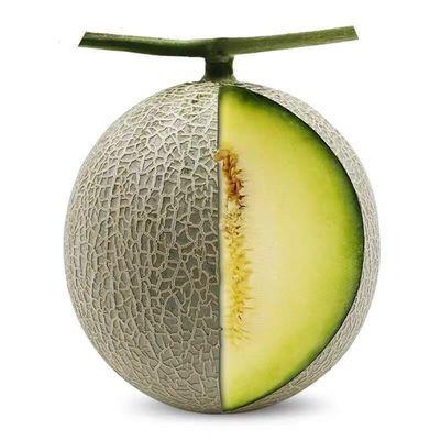 【顺丰现货】现摘玫珑瓜新鲜水果2个装单果1000克以上网纹瓜
