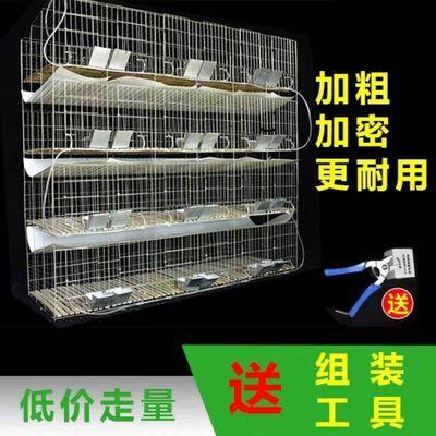 加粗12位24位商品兔子笼特大号子母笼9位兔笼子仔母笼兔舍养殖笼