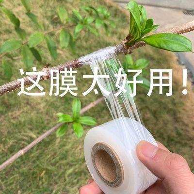 嫁接膜果树自粘接树膜专用打结树苗膜绑枝植物茶叶缠绕膜3cm芽接