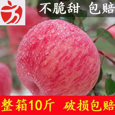 山西红富士苹果新鲜冰糖心水果10斤整箱批发当季脆甜丑苹果包邮