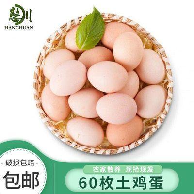60枚 农家散养 憨川 新鲜 土鸡蛋 笨鸡蛋 整箱 批发包邮 20/40枚