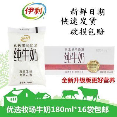 新货伊利纯牛奶网红小白袋奶180g*12/16袋整箱批发学生奶早餐奶