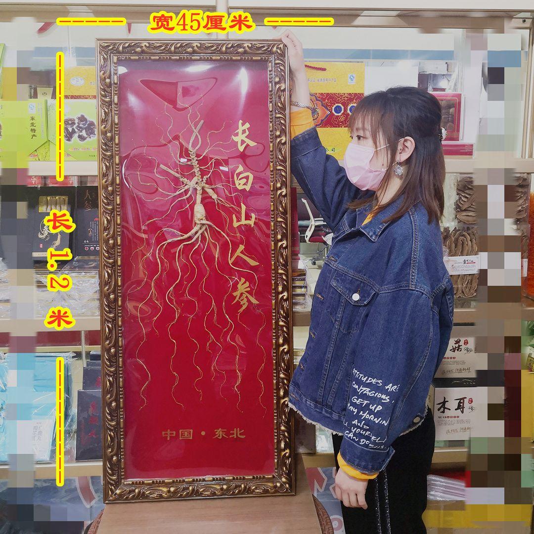 千年参王工艺礼品参(非食用)聚财客厅挂件商务礼品人参长白山山参