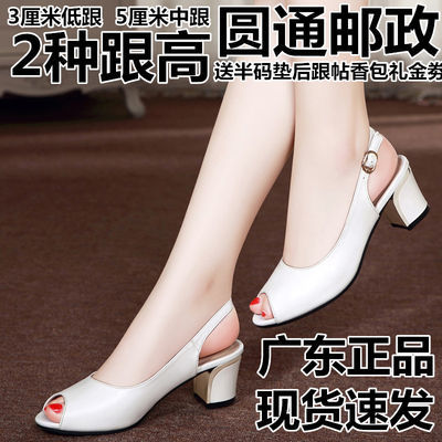 广东发货凉鞋女春夏粗跟鱼嘴女鞋浅口真皮百搭工作鞋2020新款凉鞋