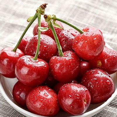 美早摘2国产水果应当厘子斤新鲜现孕妇现发樱桃季樱桃大樱桃 樱桃