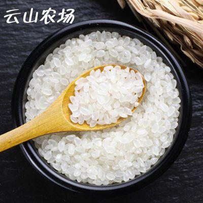 2019年新米珍珠米小町米10斤东北黑龙江农家自产香米农场直发现磨