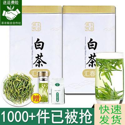 安吉白茶【鲜爽不苦涩】2020新茶雨前珍惜绿茶珍稀茶叶散装250克