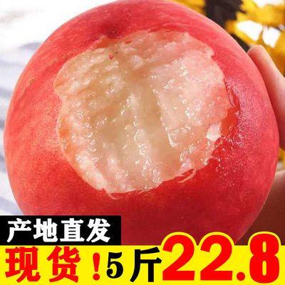 桃子水果一整箱5斤批发新鲜血桃脆甜多汁毛桃水蜜桃孕妇应当季3斤