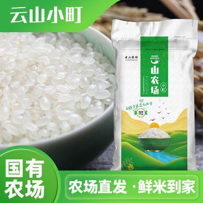 东北大米20斤北大荒集团黑龙江云山农场直发小町米珍珠米