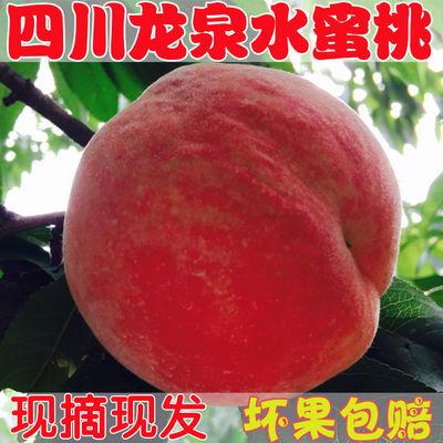成都龙泉水蜜桃水果当季整箱5斤包邮孕妇脆桃子现摘现发新鲜
