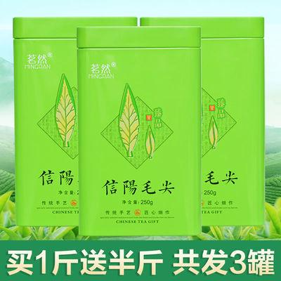 信阳毛尖2020新茶毛尖茶炒青绿茶春茶高山茶叶散装浓香型250g500g