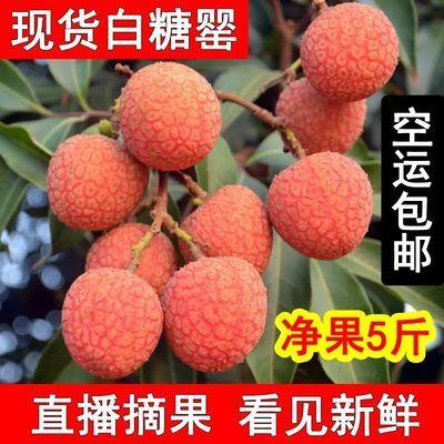 现摘新鲜荔枝水果 高州大白糖罂海南妃子笑桂味糯米糍2/3/5斤空运