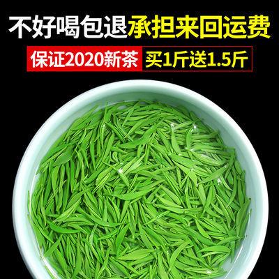 【买1斤送1.5斤】信阳毛尖2020新茶叶绿茶浓香耐泡250g罐装多规格