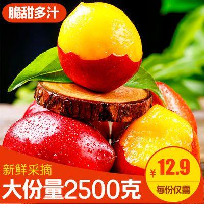 山东砀山油桃5斤新鲜水果当季整箱红皮黄肉黄心大果脆甜大桃子10
