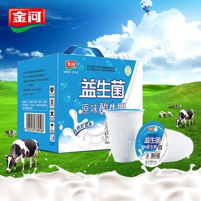 金河乳酸菌老酸奶原味浓缩发酵型益生菌180g酸牛奶整箱12杯装包邮