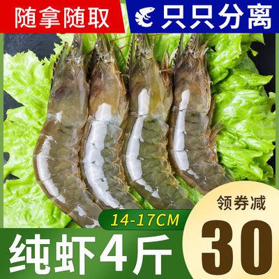 冷链发货 海捕大虾整箱基围虾冻虾大虾海虾新鲜活虾海鲜鲜活水产