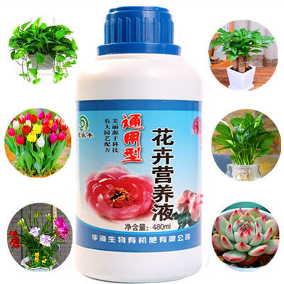 盆栽植物营养液通用绿萝发财树肥料叶面肥多肉花卉有机肥复合肥