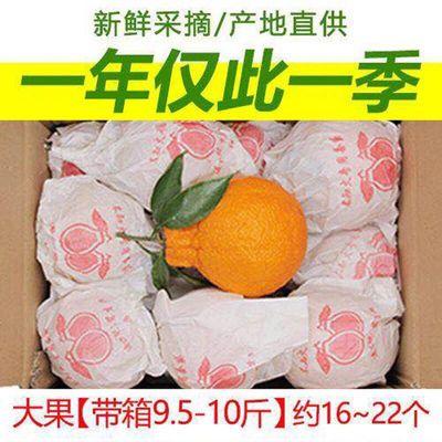 【买5送5】四川丑橘不知火丑八怪橘子新鲜水果柑橘丑柑丑桔批发10