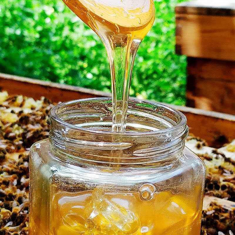 54293-蜂蜜天然正品深山百花蜜自然成熟土蜂蜜农家自产自销槐花蜜-详情图