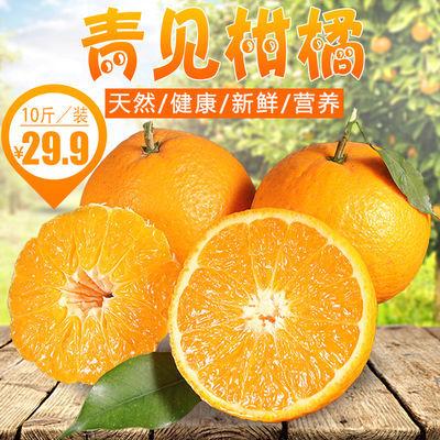 四川丑柑青见非丑橘不知火丑八怪橘子新鲜孕妇水果