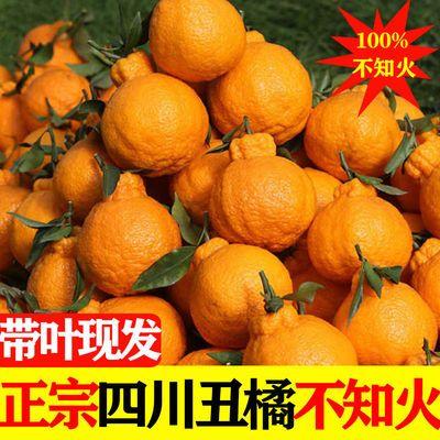 四川丑橘不知火带箱10装丑八怪橘子桔子丑柑耙耙柑新鲜水果2/5斤