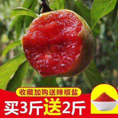 三华李芙蓉李现摘当季红心李双华李新鲜脆甜李子孕妇水果3/5斤装