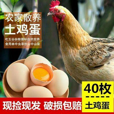 【当天现捡】40枚正宗农家散养土鸡蛋新鲜营养笨鸡蛋破损包赔