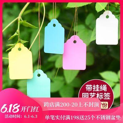PVC防水园艺标签花卉吊牌塑料标签吊签彩色苗木植物标签多肉挂牌