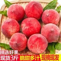 新鲜水蜜桃水果5斤整箱桃子春雪脆桃毛桃孕妇雪桃现摘蜜桃3斤批发
