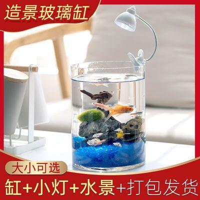 造景鱼缸创意生态微景观玻璃缸金鱼缸灯办公桌小型装饰品一叶莲用