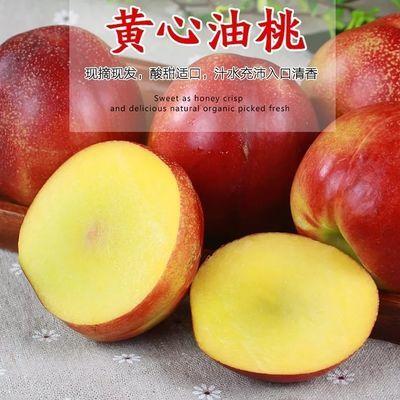油桃黄心大油桃砀山油桃脆香甜现摘现发孕妇新鲜水果3-5斤包邮