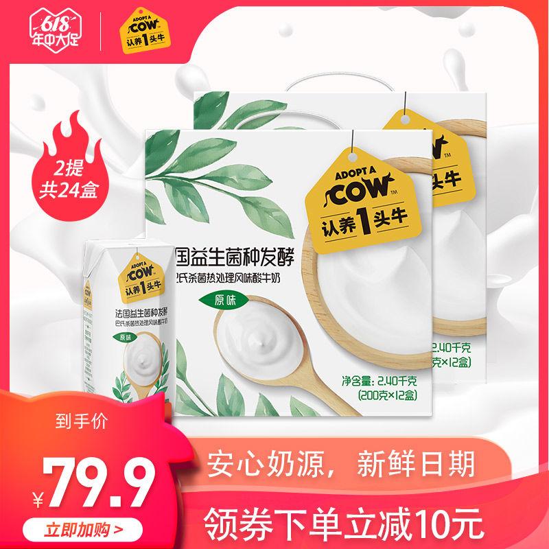 认养一头牛常温原味酸奶200g*12盒*2箱儿童风味酸牛奶整箱批特价