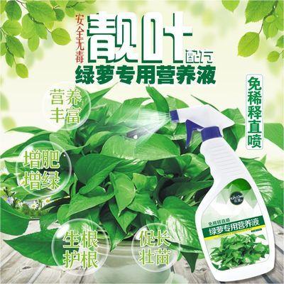 绿萝营养液花肥料植物通用绿萝多肉花盆花土营养土通用花卉盆栽