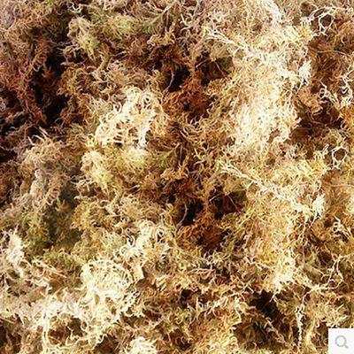 质干苔藓盆栽植物料介质专用土营养肥料包邮水苔兰花蝴蝶兰栽培基