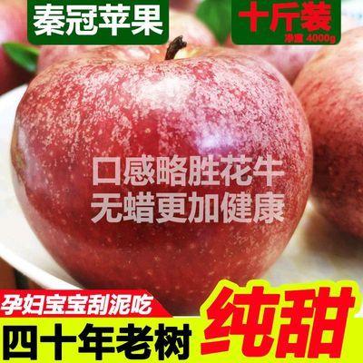 新鲜苹果水果秦冠脆甜粉面陕西10斤批整箱吃的红富士冰糖心大平果