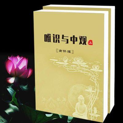 简体 唯识与中观 上下两册 (南先生怀瑾) 佛学 法物流