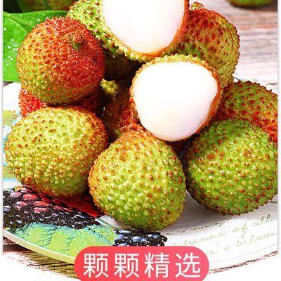 现摘纯甜大荔枝应季水果包邮新鲜非海南妃子笑荔枝白糖罂