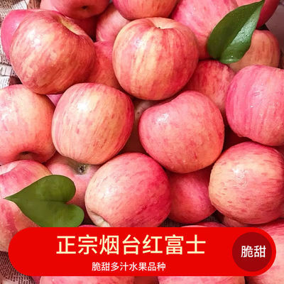 山东烟台栖霞红富士苹果水果脆甜多汁红富士买三斤送三斤