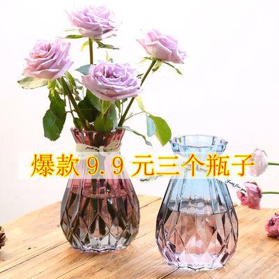 欧式创意玻璃花瓶透明水培绿萝植物玻璃花瓶家用插花客厅装饰摆件