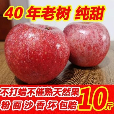 【粉甜】秦冠苹果新鲜5/10斤粉面甜果子老人宝宝孕妇陕西高原果子
